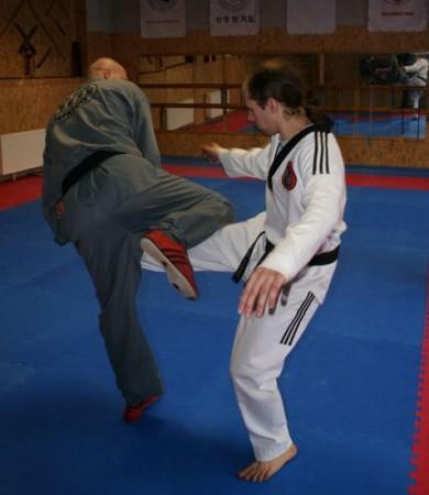 Семинар в Риге – Защита от ударов ногами 11.09.2010